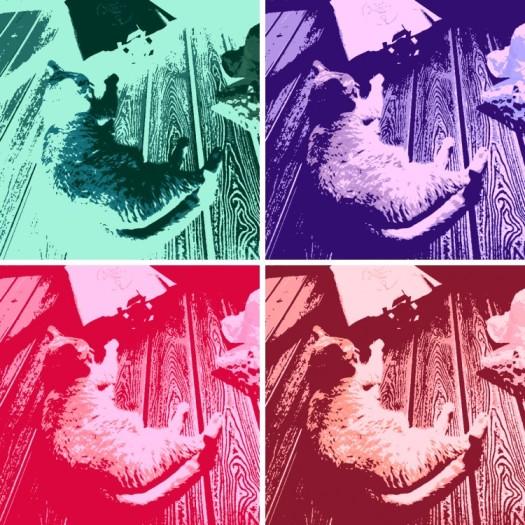 Andy Warhol-ish Raja