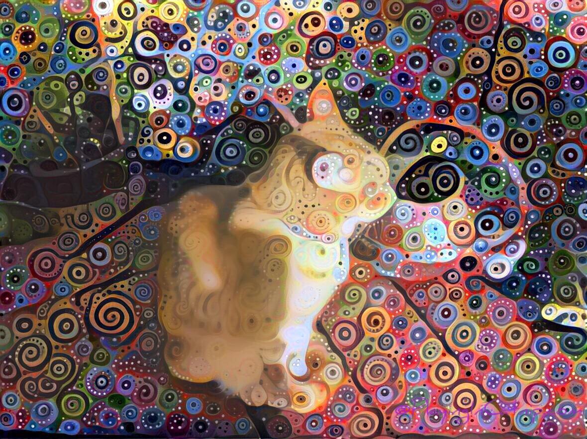 Spiraly Raja Kitty