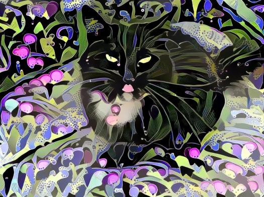 Fantasy Zoe Kitty