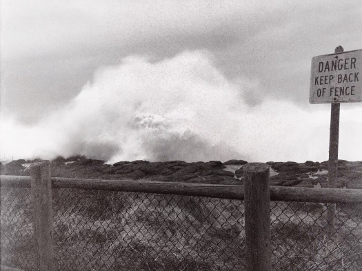 Watch Out, Wild Waves