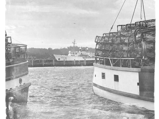 Crabbing Boat With Pots, NOAA in Background