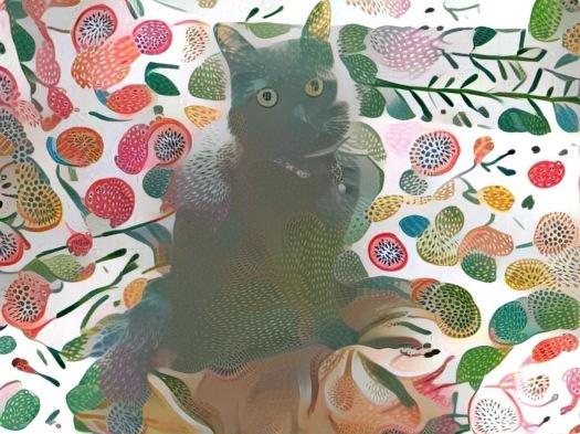 Kiwi Zoe Kitty